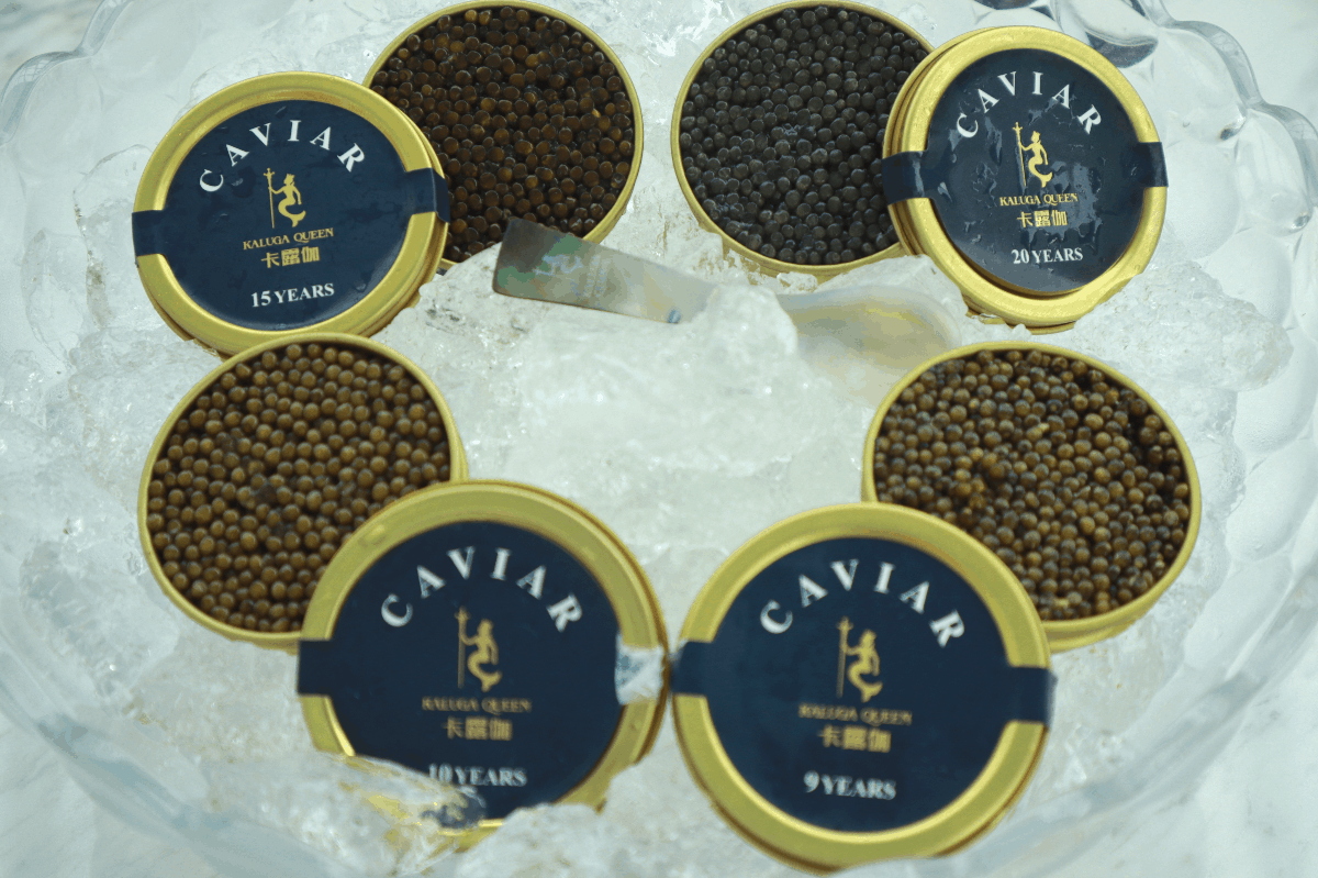 Things To Know About Caviar